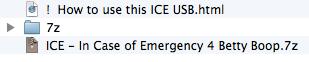 ICE-USB